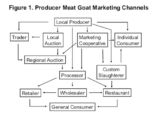 Fundamentals of Marketing Meat Goats 4-pic