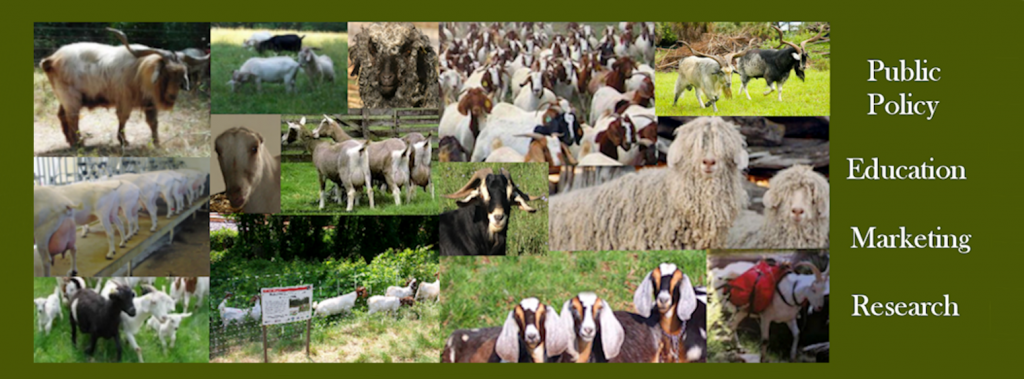 The AMERICAN GOAT FEDERATION – *** PROVIDING a UNIFIED VOICE for ALL